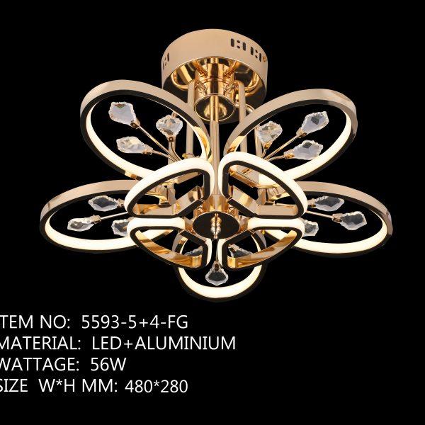 5593-5+4-FG-5 Wing Golden