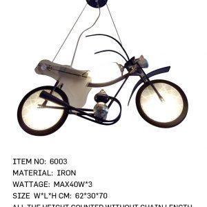 6003 - Cycle
